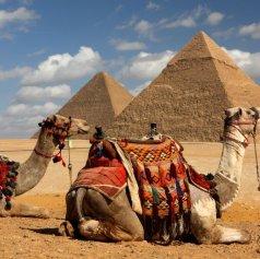 Highlight of Egypt